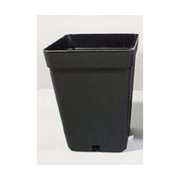 Pflanzentopf 4-eckig 0,25L schwarz - 10er Packung
