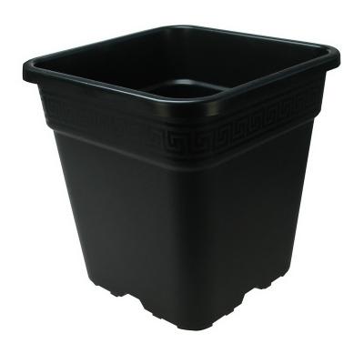 Pascquini E Bini Pflanzentopf 4-eckig 18L schwarz