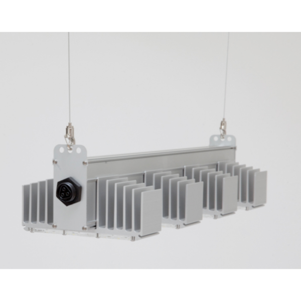SANlight Q4W kurz S2.1 Gen2, LED-Leuchte